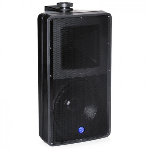 Atlas Sound SM82T 8 inch 2 Way Weather Resistant Speaker